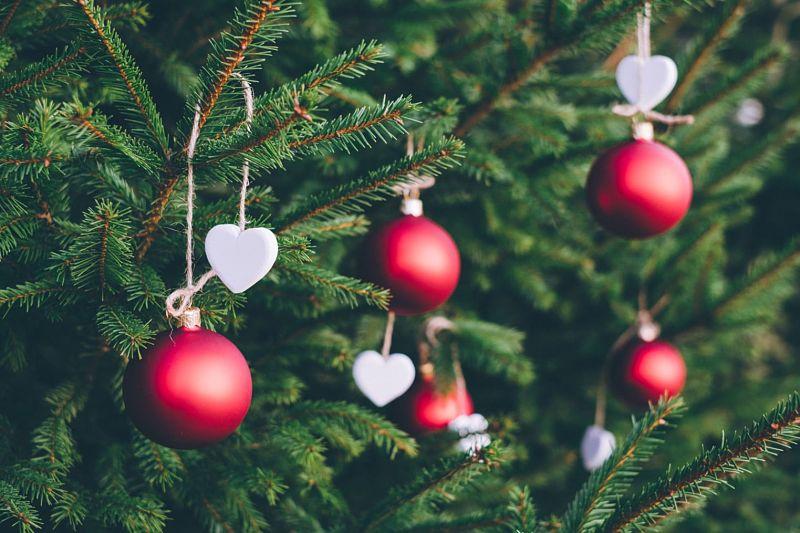 Ofertas diciembre en grupo bonatel
